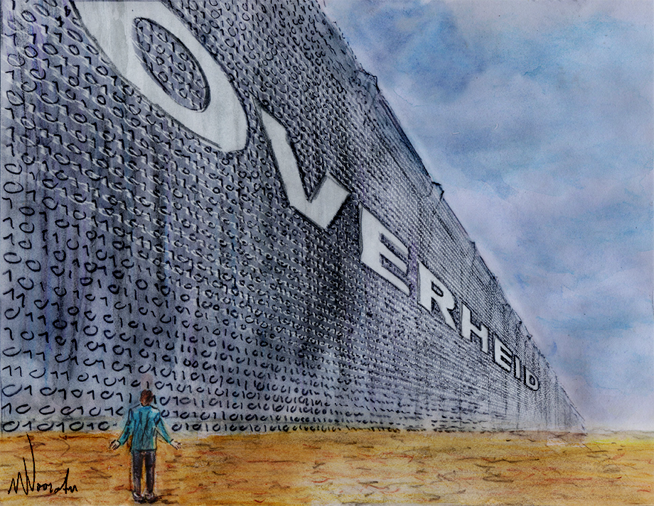 De digitale muur - Wim Noordam