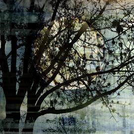 Volle maan, grafische kunst Wim Noordam